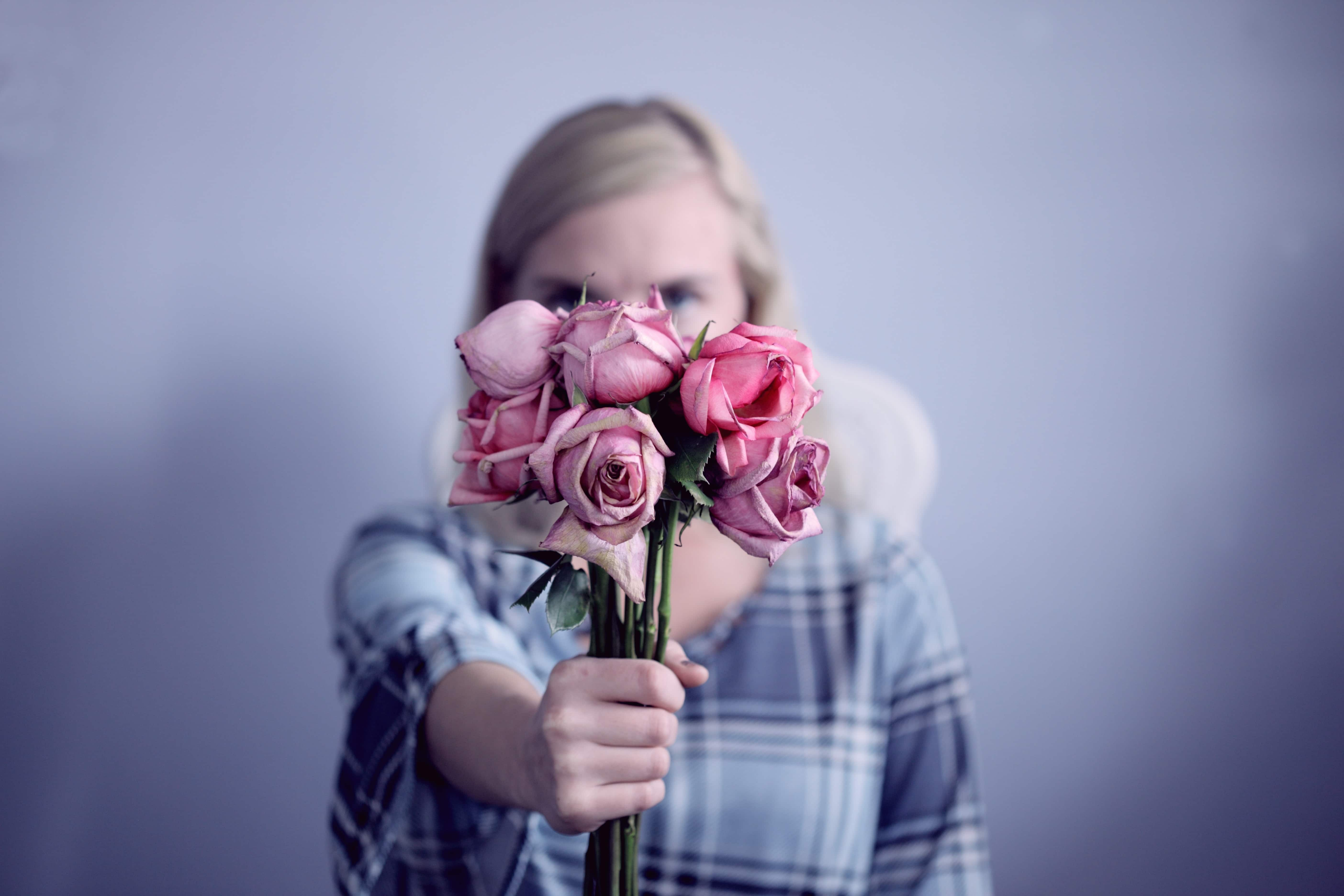 pink rose colour meaning